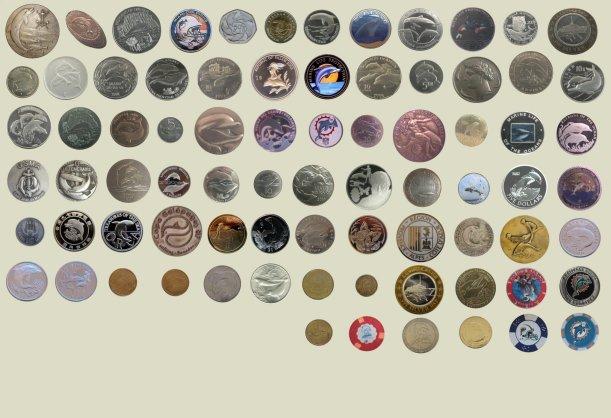 accueil piece 1 mes dauphins collection de dauphin sous toutes ses formes pin 39 s objet photo. Black Bedroom Furniture Sets. Home Design Ideas